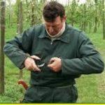 کانال آموزش پیوند درختان ، گیاهان (فیلم و تصویر) تخصصی و حرفه ای