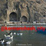 کانال کرمانشاه سیتی