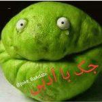 کانال Joke_BaAdabi