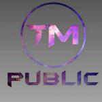کانال پابلیک تیم
