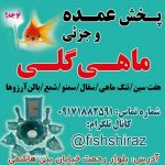 کانال فروش عمده ماهی گلی در شیراز و کلیه وسایل شب عید