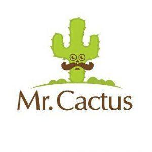 مستر کاکتوس، فروشگاه اینترنتی گل و گیاه