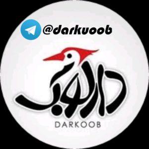 کانال تلگرام دارکوب