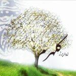 کانال تلگرام اشعار پژواک روشن روان
