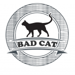 کانال تلگرام Bad cat