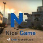 کانال تلگرام NiceService