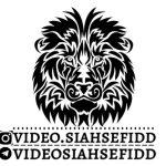 کانال تلگرام ویدیو سیاه و سفید