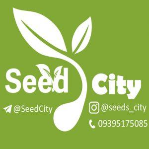 کانال تلگرام شهر بذر  Seeds City