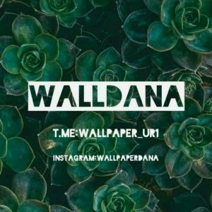 کانال تلگرام Walldana(والپیپر)