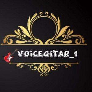کانال تلگرام ویس گیتاری
