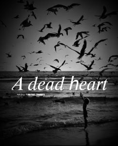 کانال تلگرام تکست یک دل مرده